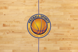 hardwood floor with logo and line